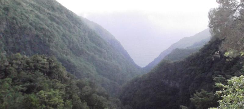 Canyon João Delgado